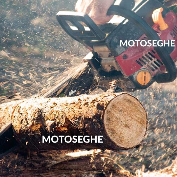 Motoseghe