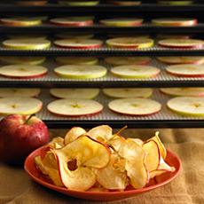 Coltelli da frutta