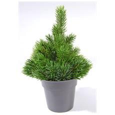 Pinetto Cm. 25 C / Vaso Verde