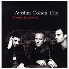 Avishai Cohen Trio - Gently Disturbed