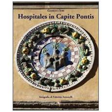 Hospitales in capite pontis. L'ospedale del Ceppo, il suo sviluppo e la Chiesa di S. Maria delle Grazie