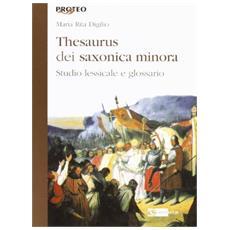 Thesaurus dei saxonica minora. Studio lessicale e glossario