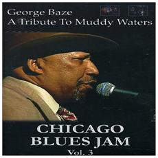 Chicago Blues Jam - Vol. 3