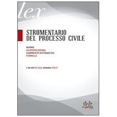 Strumentario del processo civile. Norme, giurisprudenza, commento sistematico, formule