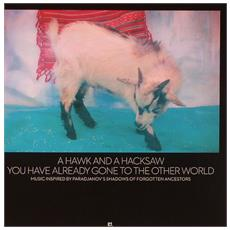 A Hawk And A Hacksaw - You Have Already Gone To The Other World (2 Lp)