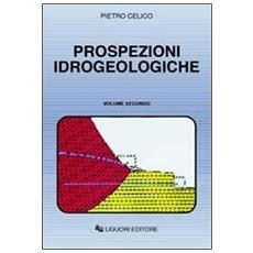Prospezioni idrogeologiche. Vol. 2