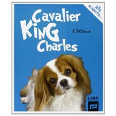Cavalier King Charles alla scoperta. . .