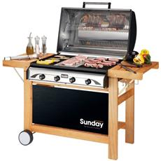 Grill Barbecue A Gas Profy 4
