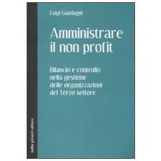 Amministrare il non profit. Bilancio e controllo nella gestione delle organizzazioni del terzo settore