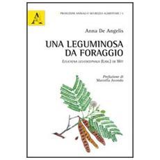 Una leguminosa da foraggio. Leucaena leucocephala (Lam.) De Wit