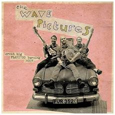 Wave Pictures (The) - Great Big Flamingo Burning