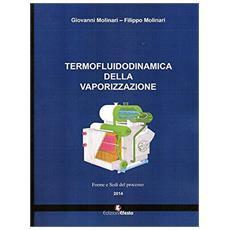 Termofluidodinamica della vaporizzazione. Modalità e componenti del processo