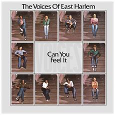 Voices Of East Harlem - Can You Feel It