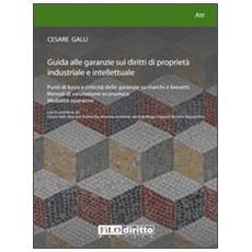 Guida alle garanzie sui diritti di proprietà industriale e intellettuale