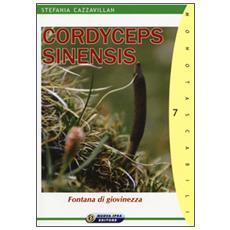 Cordyceps sinensis. Fontana di giovinezza