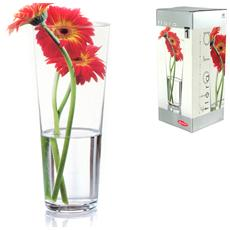 Vaso Vetro Flora Conicalice 26 Decorazioni