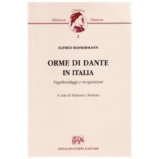 Orme di Dante in Italia. Vagabondaggi e ricognizioni
