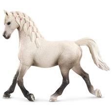 Horse Club Giumenta araba