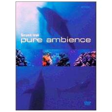Dvd Pure Ambience