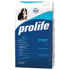 Cibo per Cani Puppy Large 3 kg