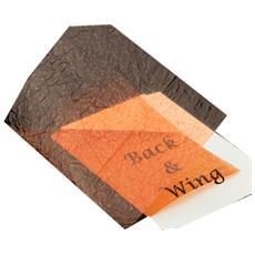 Foglio Wing Foil Unica Marrone