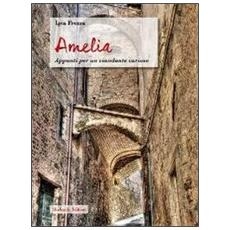Amelia. Appunti per un viandante curioso