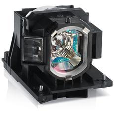 Lampada proiettore - 4000 ora / e (modalità standard) / 5000 ora / e