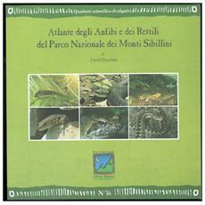 Atalnte degli anfibi e dei rettili del parco nazionale dei monti Sibillini