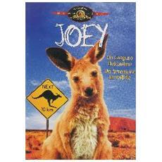 Dvd Joey