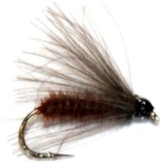 Mosca Brown St 12 Marrone