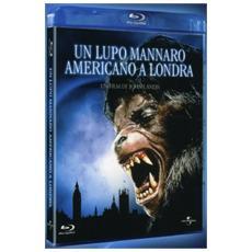 Brd Lupo Mannaro Americano A Londra (un)