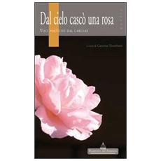 Dal cielo cascò una rosa. Voci poetiche dal carcere