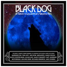 Black Dog - A Tribute To Led Zeppelin's Greatest Hits