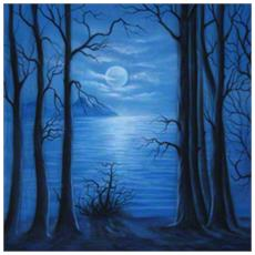 pro Stoffa sfondo Moonlight, 3x6m - Europa