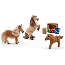 41432 Famiglia di Cavalli Shetland