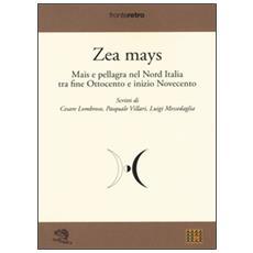 Zea Mays. Mais e pellagra nel nord Italia tra fine Ottocento e inizio Novecento