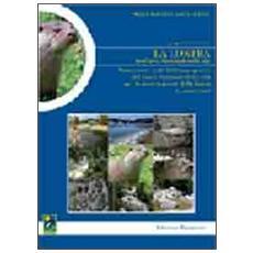 La lontra. Valutazione degli habitat acquatici del Parco nazionale della Sila per la conservazione della lontra