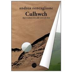 Culhwch. Apprendista eroe alla corte di Artù