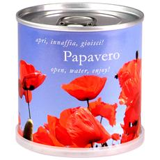 Papavero Fiori In Lattina Macflowers Made In Germany Cm 7 5x8 H