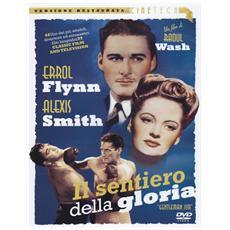 Dvd Sentiero Della Gloria (il)