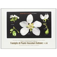 Famiglie di piante vascolari italiane: 31-60
