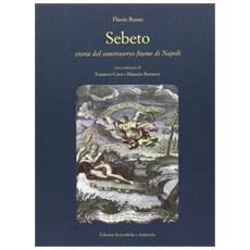Sebeto. Storia del controverso fiume di Napoli