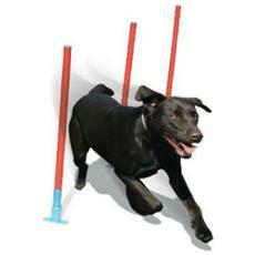 Attrezzo Agility Dog Slalom