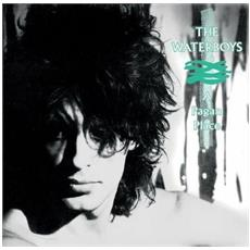 Waterboys (The) - Pagan Place