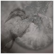 Torpor / Sonance - Split