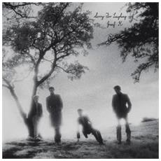 Josef K - Sorry For Laughing (Lp+Cd)