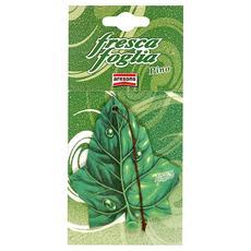 Deodorante Fresca Foglia, Cartonfeltro, 1 Pezzo Pino