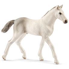 Horse Club 13860 Holsteiner Fohlen