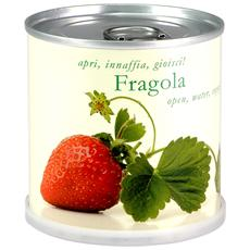 Fragola Fiori In Lattina Macflowers Made In Germany Cm 7 5x8 H