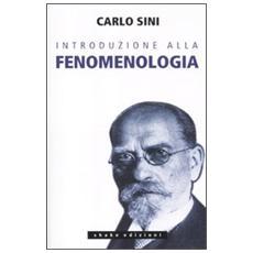 Introduzione alla fenomenologia